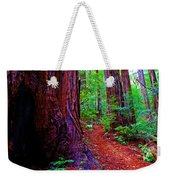 Cosmic Redwood Trail On Mt Tamalpais Weekender Tote Bag