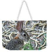 Cottontail Rabbit 4320-080917-1 Weekender Tote Bag