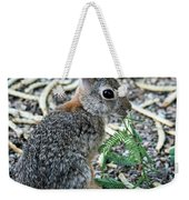 Cottontail Rabbit 4320-080917-2cr Weekender Tote Bag
