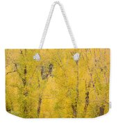 Cottonwood Autumn Colors Weekender Tote Bag