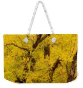 Cottonwood Fall Foliage Colors Abstract Weekender Tote Bag
