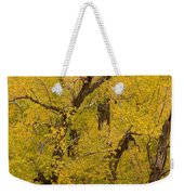 Cottonwood Fall Foliage Colors Weekender Tote Bag