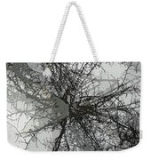 Cottonwood Tree Montage Weekender Tote Bag