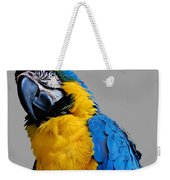 Could I Look Any Better Weekender Tote Bag