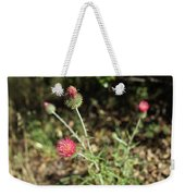 Coulter's Thistle Weekender Tote Bag