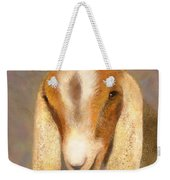 Country Charms Nubian Goat With Daisy Weekender Tote Bag