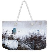 Couple Chilly Bluebirds Weekender Tote Bag
