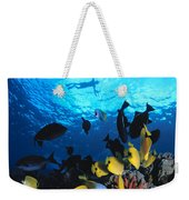 Couple Snorkels At Surfac Weekender Tote Bag