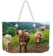 Cow Gazing  Weekender Tote Bag