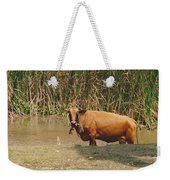 Cow In The Field Weekender Tote Bag