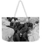 Cows In The Hole Weekender Tote Bag