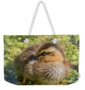 Coy Duckling Weekender Tote Bag