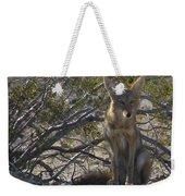 Coyote 3 Weekender Tote Bag