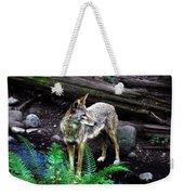 Coyote In Mid Stream Weekender Tote Bag