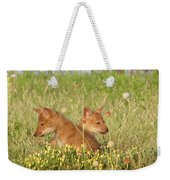 Coyote Pups Weekender Tote Bag