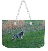 Coyote Stance  Weekender Tote Bag