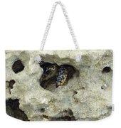 Crab Hiding In A Rock On The Seashore Weekender Tote Bag