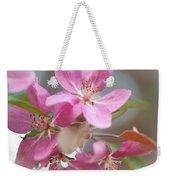 Crabapple Tree  Pink Flowers Weekender Tote Bag