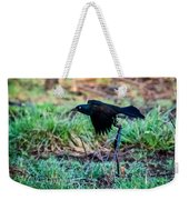 Grackle In The Morning  Weekender Tote Bag