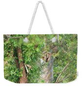 Craggy Tree For Will Weekender Tote Bag