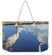 Cranes At The Lake Weekender Tote Bag