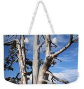 Crater Lake Tree Weekender Tote Bag