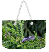Crawlly Caterpillar Weekender Tote Bag