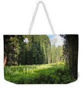 Crescent Meadow In Sequoia Weekender Tote Bag