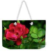 Crimson Red Rose By Kaye Menner Weekender Tote Bag