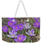Crocuses 5 Weekender Tote Bag
