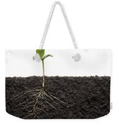 Cross-section Of Soybean Seedling Weekender Tote Bag