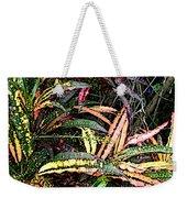 Croton 1 Weekender Tote Bag by Eikoni Images