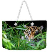 Crouching Tiger Hidden Cameraman Weekender Tote Bag