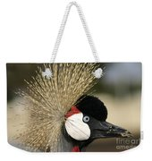 Crown Crane Close Up Weekender Tote Bag