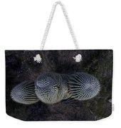 Crown Royal Saguaro Weekender Tote Bag