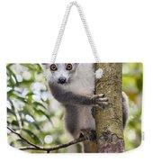 Crowned Lemur Madagascar Weekender Tote Bag