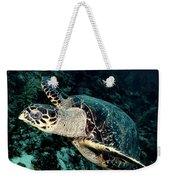 Cruising Turtle Weekender Tote Bag