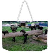 Cubs At The Playground Weekender Tote Bag