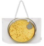 Culture Plate Of Penicillium Mold Weekender Tote Bag