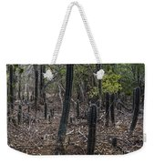 Curacao - Blooming Cacti In The Forest Weekender Tote Bag