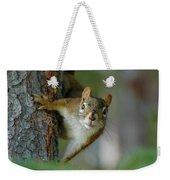 Curious Alaskan Red Squirrel Weekender Tote Bag