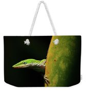 Curious Anole Weekender Tote Bag