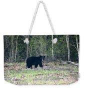 Curious Black Bear  Weekender Tote Bag
