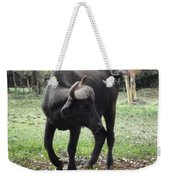 Curious Buffalo Weekender Tote Bag