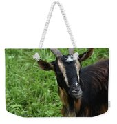 Curious Goat With Very Long Shaggy Fur Weekender Tote Bag