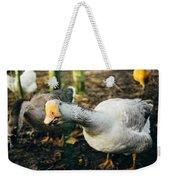 Curious Grey Goose Weekender Tote Bag