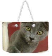 Curious Kitten Weekender Tote Bag