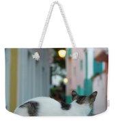 Curious Kitty Weekender Tote Bag