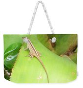 Curious Lizard I Weekender Tote Bag