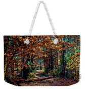 Curious Path In Autumn Weekender Tote Bag